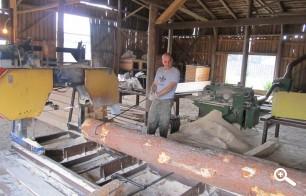 Распиловка леса на производстве
